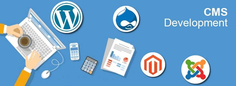 How CMS Development Service Brings Evolution in Web Development?