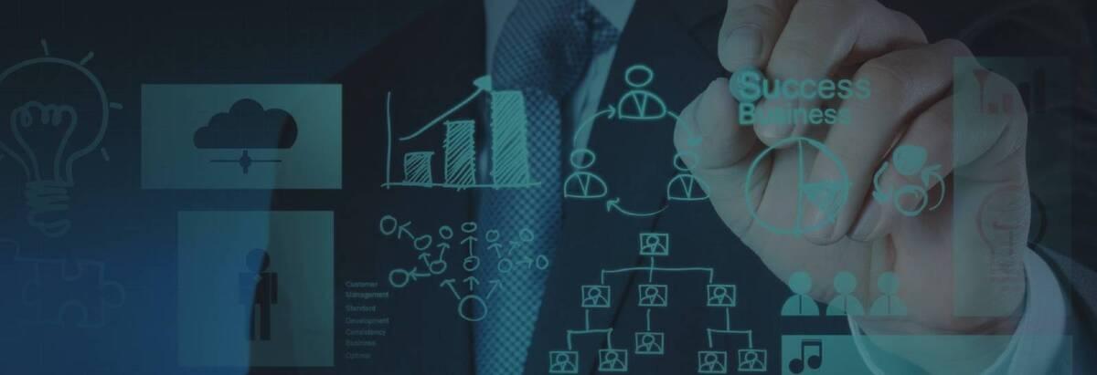 ERP development services